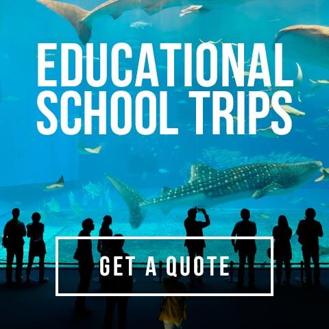 Groupia School Trips